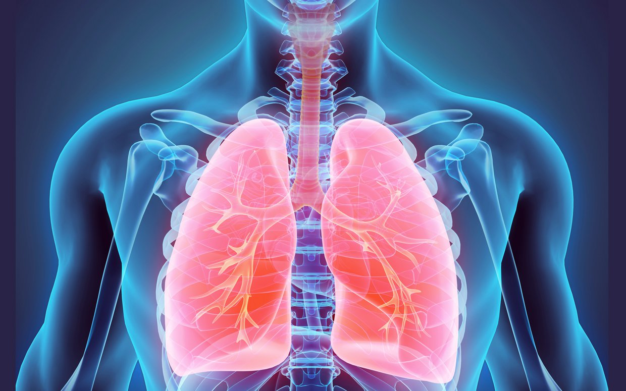 Lungs, liver at danger