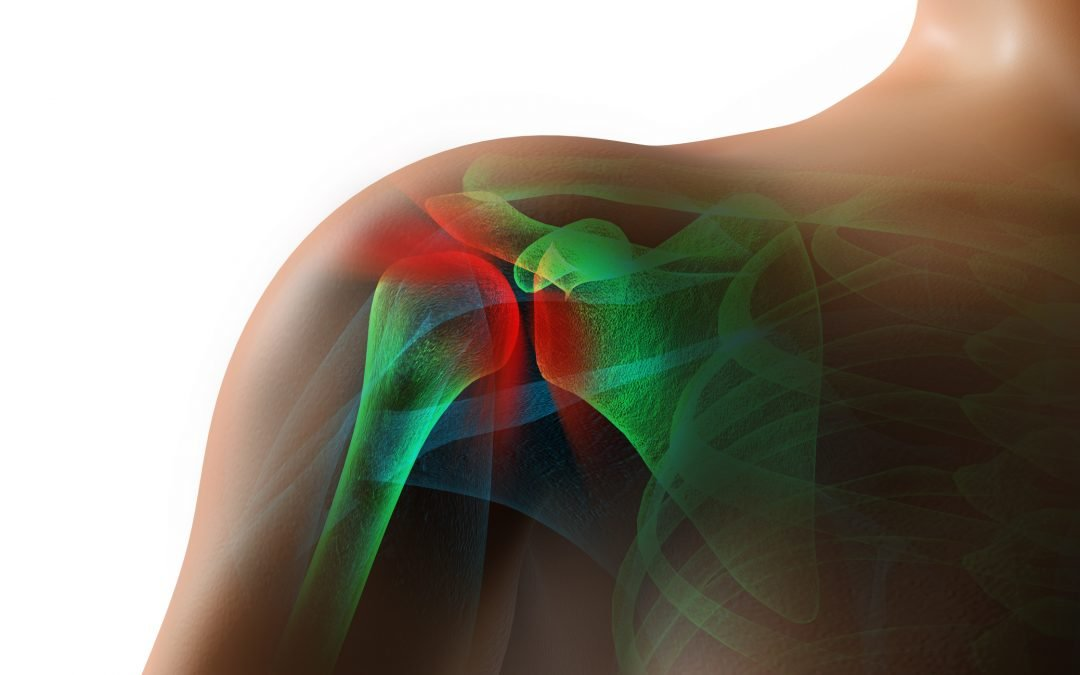 What's inside the shoulder and how to keep them strong?