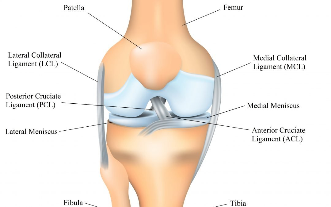 Causes of Knee Injuries
